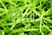 Зеленая липа